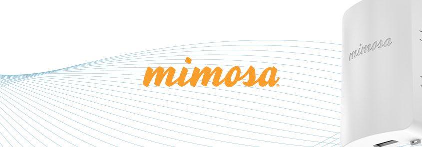 evenflow_brand_Mimosa_header